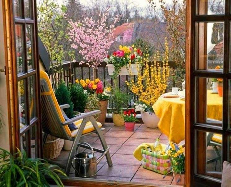 huglero.com, https://huglero.com , süs bitkileri, iç mekan süs bitkileri,