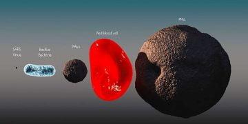 coronavirüs büyüklüğü coronavirus size https://img.huglero.com