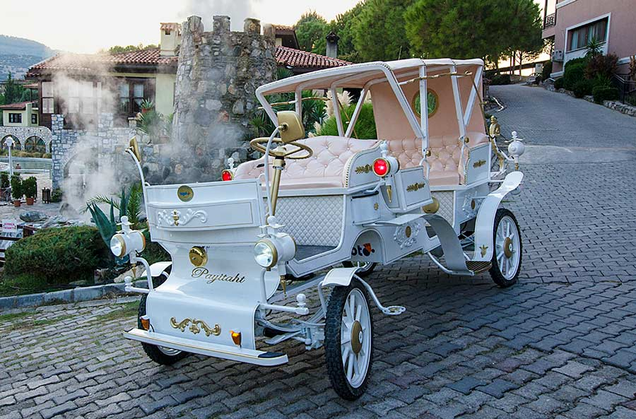 electric horse-drawn carriage https://huglero.com