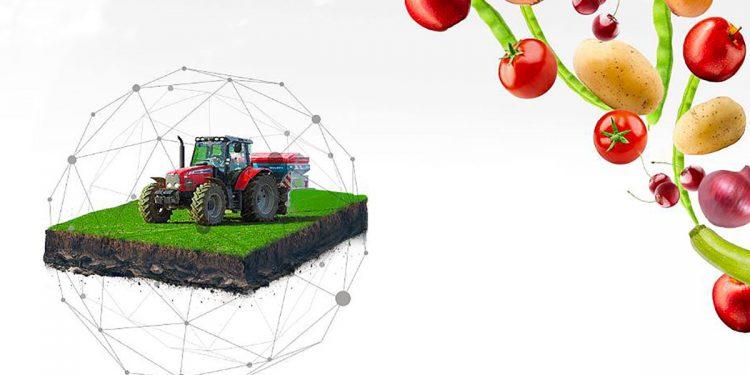 dijital tarım pazarı ditap https://img.huglero.com