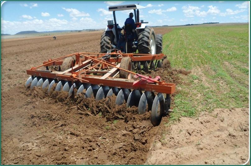 image 3 https://huglero.com/misir-ekimi-oncesi-toprak-hazirligi-nasil-yapilir/ Mısır ekimi öncesi toprak hazırlığı nasıl yapılır? En ideal hazırlık ve ekim sürecini bugün sizlerle paylaşmaya çalışacağım. Dünyada en çok ekilen 3. bitki tohumu, en çok yetiştirilen 1. bitki olan mısır bitkisi dünya üzerinde en çok kullanılan ürünlerden birisidir. Bir çok farklı sektörde kullanılan bu ürünün kullanıcıya ulaşabileceği son haline gelmeden önce yapılan bir yığın emek ve hazırlık süreci vardır.