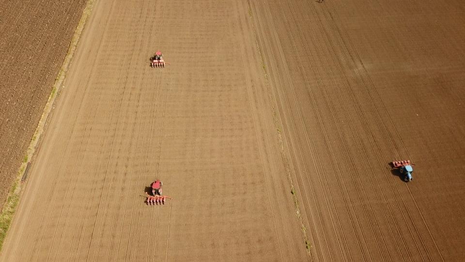 mısır çimlenme zamanı https://huglero.com