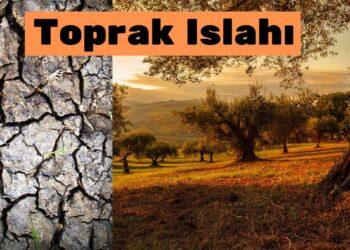 Arazide toprak ıslağı eğer arazi ağaçlıksa çok zor ve çok maliyetlidir. https://img.huglero.com