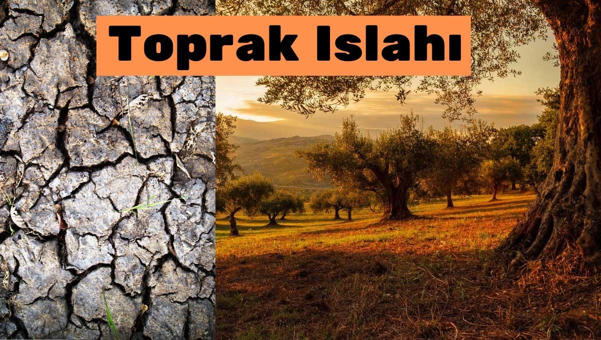 Arazide toprak ıslağı eğer arazi ağaçlıksa çok zor ve çok maliyetlidir. https://huglero.com