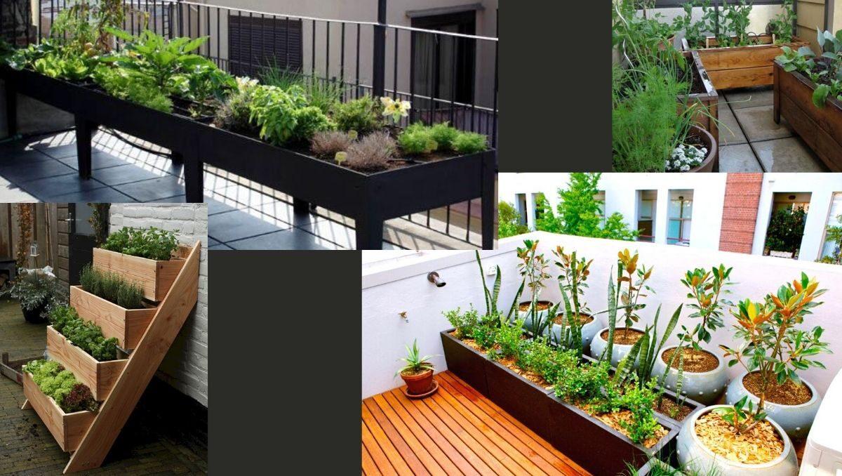 balkon bahçeciliği fikirleri balkon bahçeciliği nasıl yapılır? balkonda bahçe https://img.huglero.com