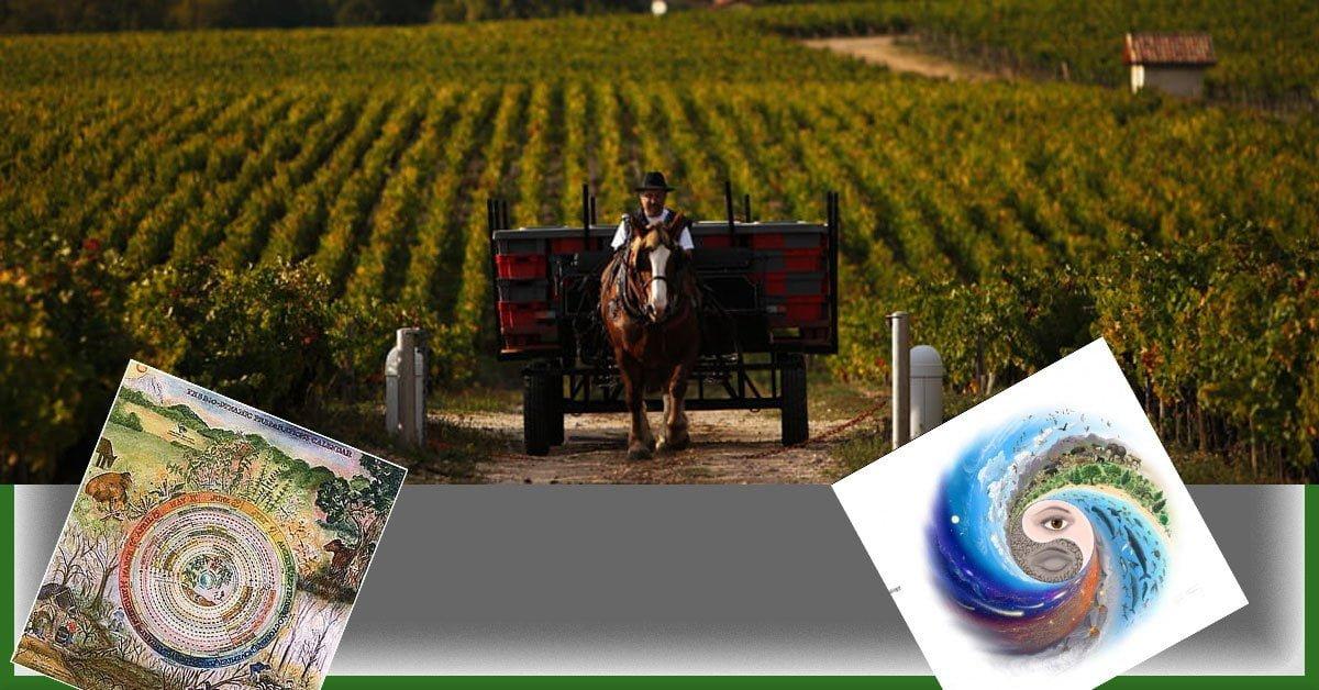 Biyodinamik tarım nedir? https://img.huglero.com