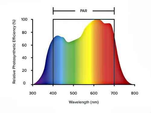 LED PAR spectra https://huglero.com/bitkiler-icin-en-ideal-beyaz-isik-nasil-olmali/ Bitkiler için en ideal beyaz ışık nasıl olmalıdır konusunda, bir önceki yazımda da belirttiğim gibi, her bir LED ampulün bir dalga boyu vardır, ancak hiçbir beyaz LED ışık güneş gibi ideal beyaz ışığı vermez.