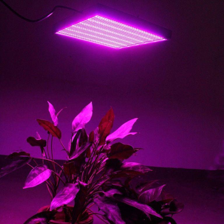 bitki yetistirme isigi https://huglero.com/bitkiler-icin-en-ideal-beyaz-isik-nasil-olmali/ Bitkiler için en ideal beyaz ışık nasıl olmalıdır konusunda, bir önceki yazımda da belirttiğim gibi, her bir LED ampulün bir dalga boyu vardır, ancak hiçbir beyaz LED ışık güneş gibi ideal beyaz ışığı vermez.